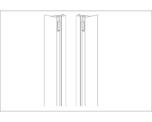 Profilés latéraux Aurlane argent 2 pièces BSP147_4P pour douche complète CAB147
