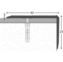 Nez de marche aluminium argenté perforé 40 x 25 x 2500 mm-thumb-1