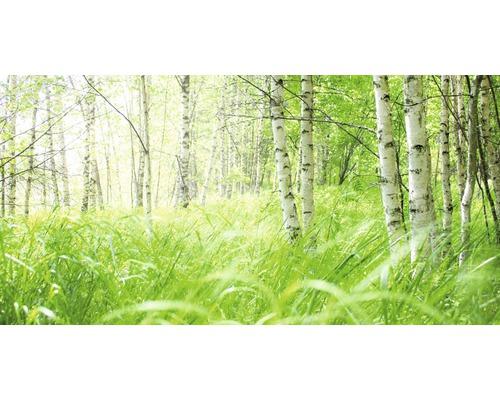 Chauffage infrarouge à motif papermoon verre Forêt de bouleaux 60 x 120 cm 750W