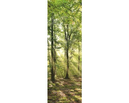 Chauffage infrarouge à motif papermoon verre Forêt Lever du soleil 40 x 120 cm 500W