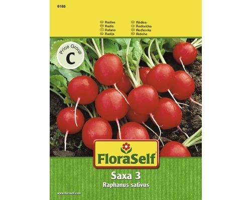 Radies 'Saxa 3' Gemüsesamen
