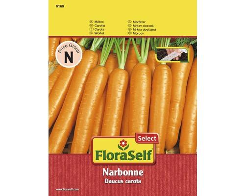 Ruban de graines de carottes ''Narbonne''