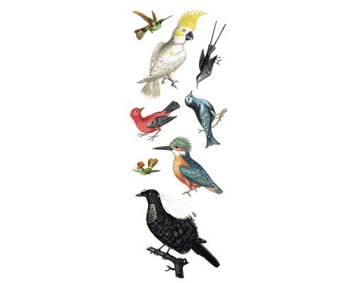 Autocollant mural Birds 25x70 cm