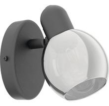 Spot patère acier/verre 1 ampoule hxL 105x65 mm Pollica noir/transparent-thumb-1