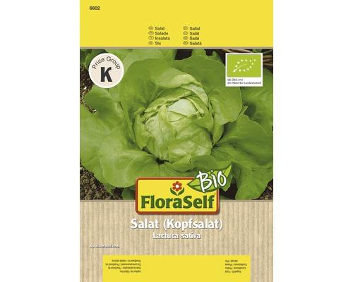Laitue bio semences de salade FloraSelf®