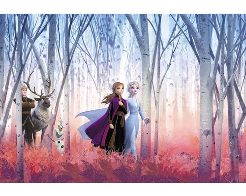 Papier peint photo papier Disney Frozen Friends forever 368 x 254 cm