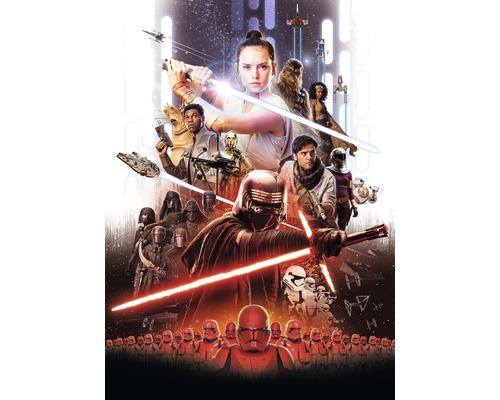 Papier peint photo papier Star Wars EP9 Rey Poster 184 x 254 cm