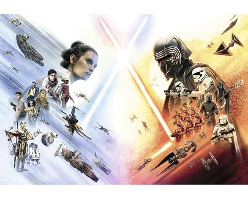 Papier peint photo papier Star Wars EP9 Wide Poster 368 x 254 cm