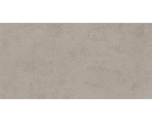 Feinsteinzeug Wand- und Bodenfliese Marlin grau 30x60 cm