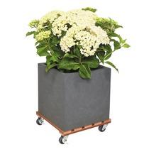 Chariot de plante bois composite 29x29 cm capacité de charge max. 80 kg marron-thumb-1
