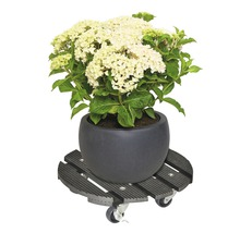 Chariot de plante bois composite Ø 29 cm capacité de charge max. 100 kg anthracite-thumb-1