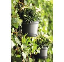 Pots de fleurs pour balcon allin1 plastique 1 pce-thumb-2