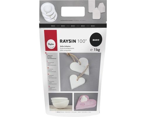 Poudre de moulage Raysin 100, blanc, sachet