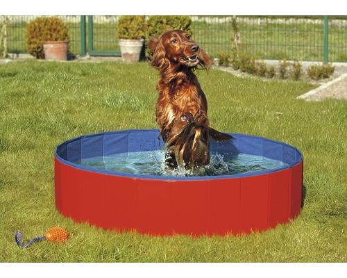 Doggy Pool 120 x 30 cm, rouge-bleu