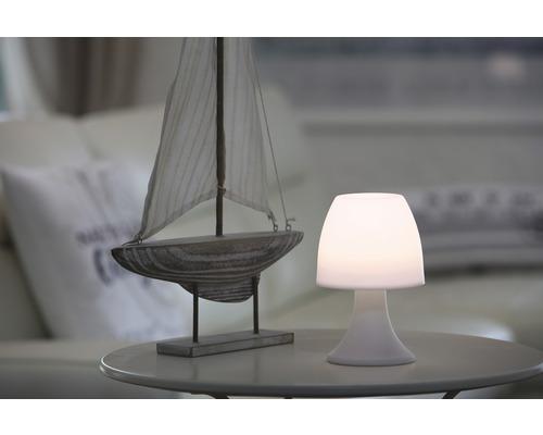 Lampadaire LED Casco avec minuterie couleur d''éclairage ton chaud