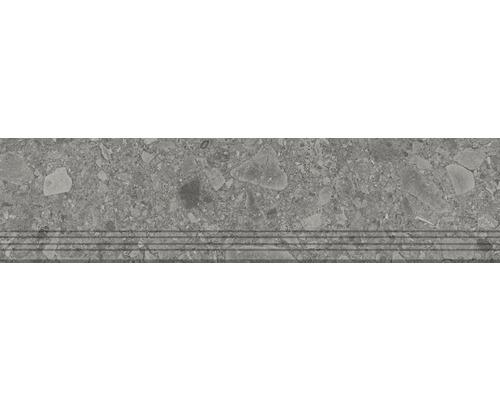 Carrelage de marches en grès cérame fin Donau gris 30x120m
