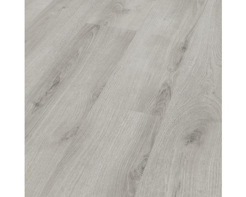 Stratifié 6.0 Basic chêne gris clair