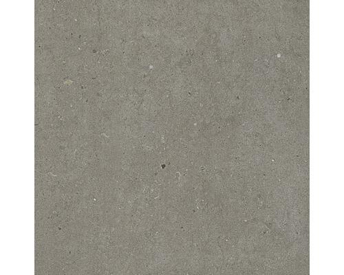 Dalle de terrasse en grès cérame fin Tessin gris 60 x 60 x 2 cm R11 B