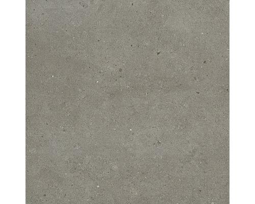 Carrelage pour sol et mur grès cérame fin Tessin gris 60x60cm