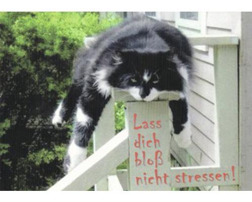 Carte postale Ne te laisse pas gagner par le stress 10.5x14.8 cm
