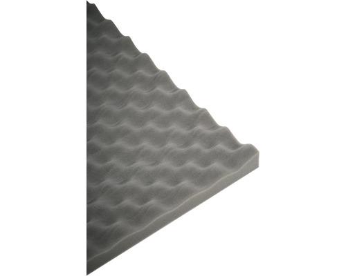 Mousse acoustique Akupur mousse à picots 50x70x3 cm