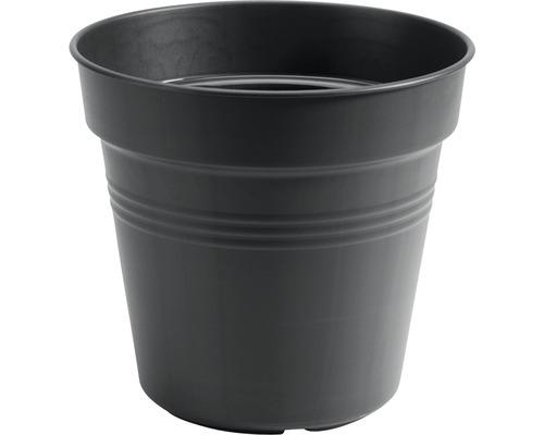 Pot de culture elho Green Basics® plastique Ø 11 H 12cm anthracite