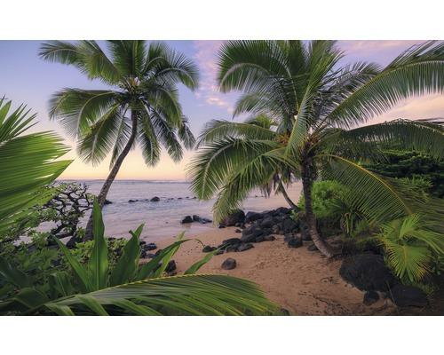 Papier peint photo intissé Hawaiian Dreams 9 pces450 x 280 cm