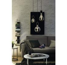 Ampoule globe LED à intensité lumineuse variable G125 verre fumé E27 4W(14W) 130lm 2700K blanc chaud-thumb-4