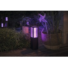 Borne LED Philips hue extension Fuzo White and color ambiance 8W 1200 lm noir h 400 mm - compatible avec SMART HOME by HORNBACH-thumb-0