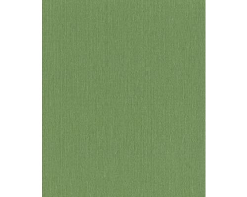 Papier peint intissé 537178 Barbara Schöneberger II Uni vert