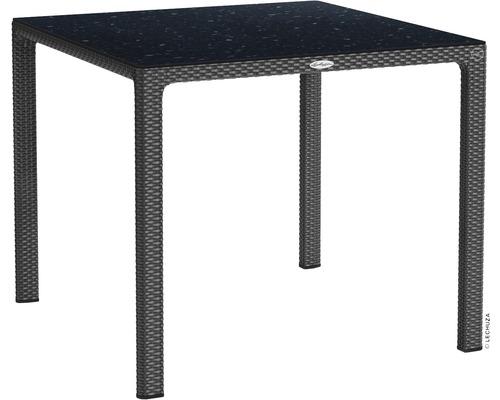 Table de jardin Lechuza en plastique 90 x 90 cm granit avec plateau de table en HPL