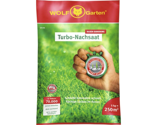 Semences de gazon WOLF-Garten Réensemencement Turbo 5 kg, 250m²