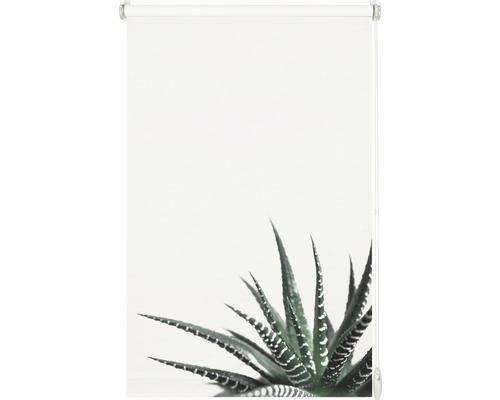 Store Gardinia EasyFix sans perçage succulentes 45x150 cm