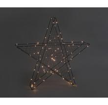 Étoile 3D 100 LED Lafiora 63 x 11 x 63 cm intérieur blanc chaud avec fonction de minuterie-thumb-0