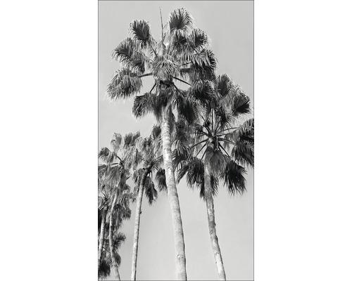Panneau décoratif Black & White Palms I 15x30cm