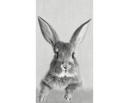 Panneau décoratif Rabbit 15x30cm