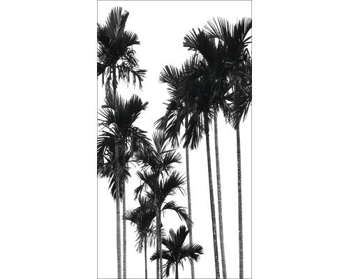 Panneau décoratif Black & White Palms II 15x30cm