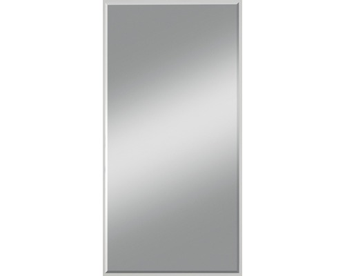 Kristallspiegel Gennil 50x110 cm