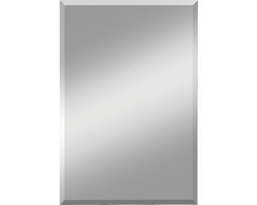 Kristallspiegel Gennil 60x100 cm
