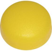 Cache-vis pour plaque minéralogique jaune, 100 pièces-thumb-0