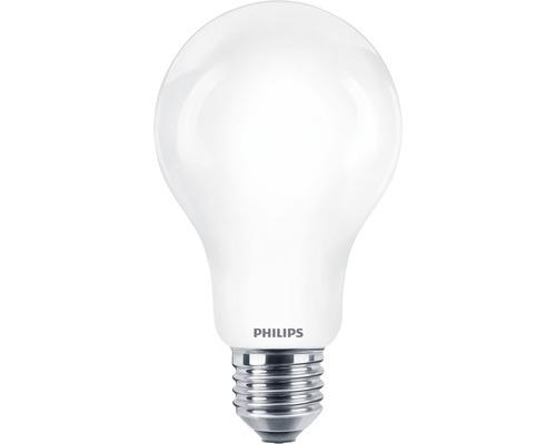 Ampoule LED A67 mat E27/17,5W (150W) 2452lm 2700K blanc chaud