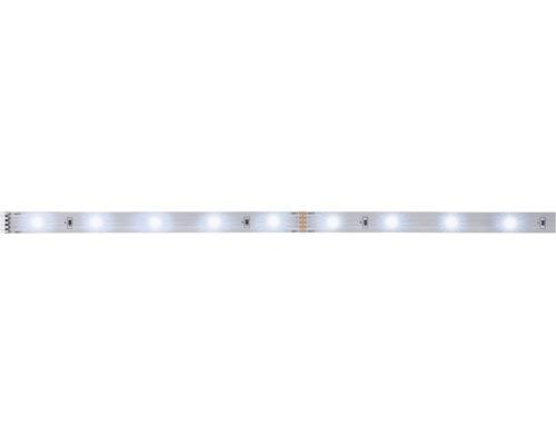 Bande MaxLED 1,0 m 250 4W 300 lm 6500 K blanc naturel 30 LED non revêtu 24V convient comme extension au kit de base