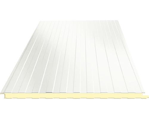 Panneau sandwich PRECIT pour le mur RAL 9002 blanc gris 3000 x 1000 x 40 mm