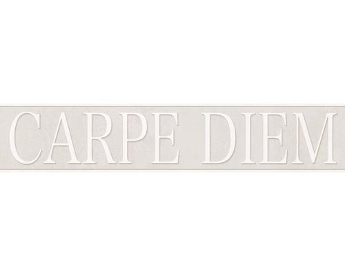 Frise Stick Up`s Carpe diem gris 5m x 10.6 cm