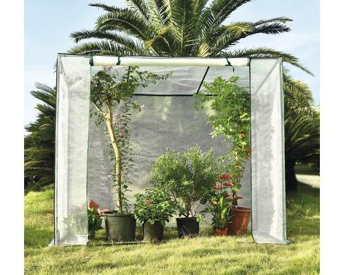 Serre à tomates 200 x 80 x 169/150 cm transparent