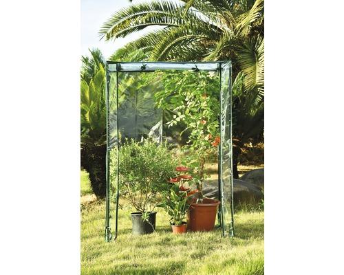 Serre à tomates 50 x 100 x 150 cm transparent