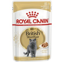 Nourriture humide pour chats ROYAL CANIN Britisch Shorthair 1 pack 12x85 g-thumb-0