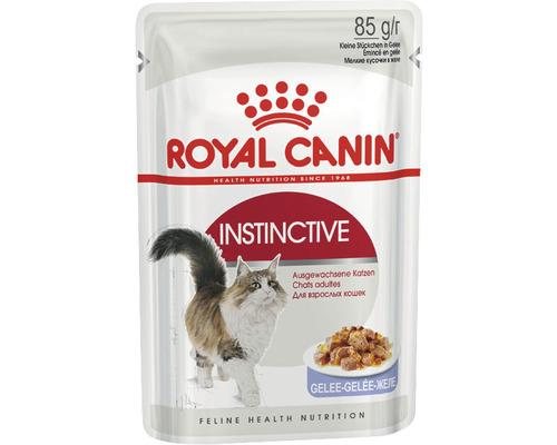 Nourriture humide pour chats, Royal Canin Instinctive en gelée 85 g