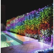 Guirlande lumineuse Twinkly 150 LED avec WI-FI et commande via une appli multicolore-thumb-10