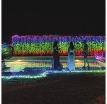 Guirlande lumineuse Twinkly 150 LED avec WI-FI et commande via une appli multicolore-thumb-15